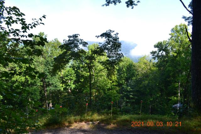 Lot 15 Deep Springs Dr. (Aka Anchor Dr.), Franklin, NC 28734 (MLS #26020925) :: Old Town Brokers