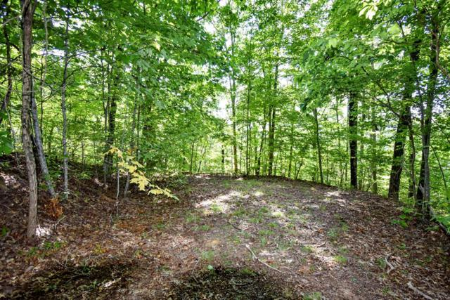 L 10/21 Black Forest Dr, Bryson City, NC 28713 (#26021043) :: High Vistas Realty