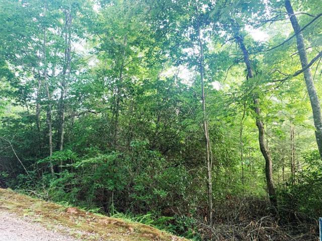 Lot 17 Cole Mountain, Sylva, NC 28779 (#26021084) :: High Vistas Realty