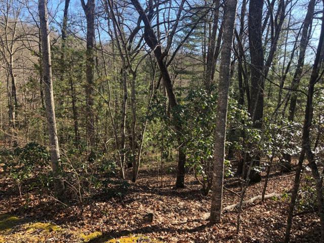 00 Wind Forest Dr, Franklin, NC 28734 (#26021144) :: High Vistas Realty