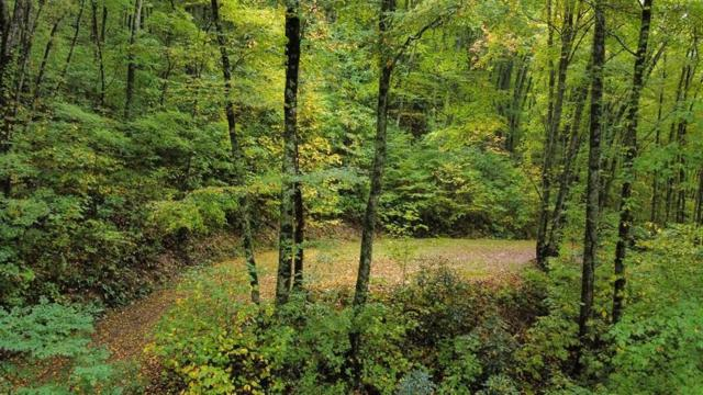 0 Long View Point, Bryson City, NC 28713 (#26021225) :: High Vistas Realty