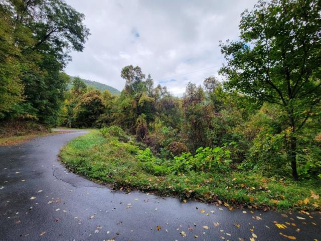 3 Silver Maple Ln Lot 3, Waynesville, NC 28786 (MLS #26021289) :: Old Town Brokers