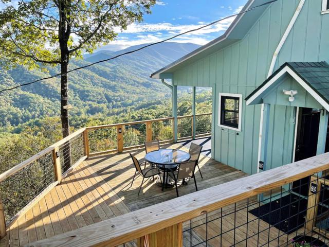 785 Heritage Way, Otto, NC 28763 (MLS #26021305) :: Old Town Brokers