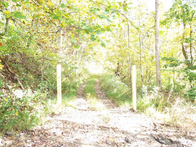 000 Catnip Road, Cullowhee, NC 28723 (MLS #26021331) :: Old Town Brokers