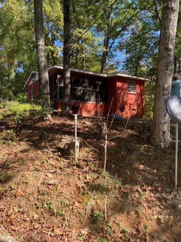 870 Shepherds Creek, Bryson City, NC 28713 (#26021336) :: High Vistas Realty
