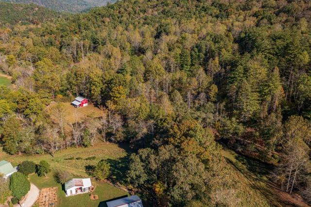 1643 Tessentee Road, Otto, NC 28734 (MLS #26021370) :: Old Town Brokers