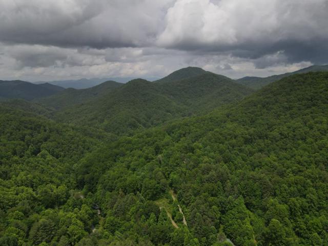 0 Enchanted Forest Dr, Sylva, NC 28734 (#26018823) :: High Vistas Realty