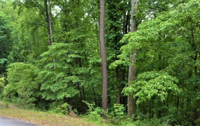 00 Young Cove Rd, Franklin, NC 28734 (#26020051) :: High Vistas Realty