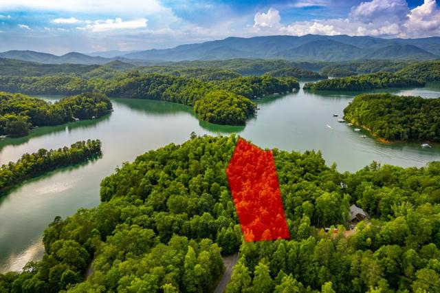 Lt 108-3 Rocky Bluff Dr, Bryson City, NC 28713 (MLS #26020066) :: Old Town Brokers