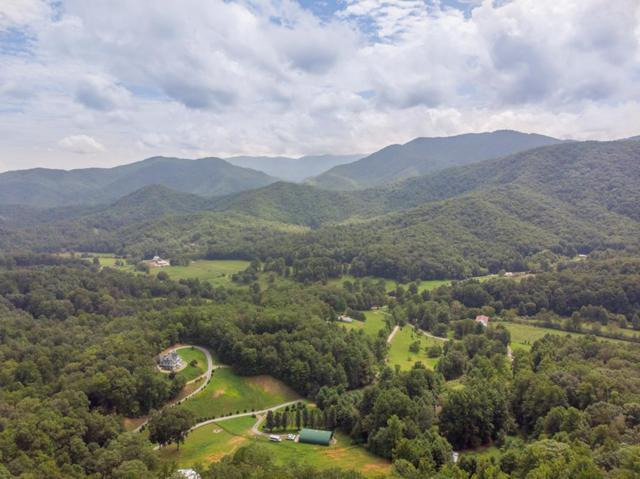 00 Cindy Cove Trail, Robbinsville, NC 28771 (MLS #26020751) :: Old Town Brokers