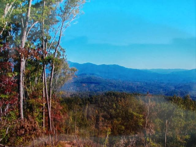 0 Coopers Crk Rd, Bryson City, NC 28713 (MLS #26013862) :: Old Town Brokers