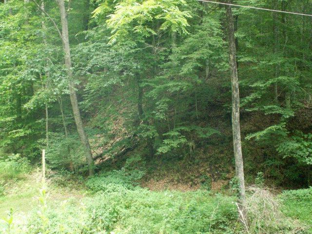 28/9A Lantern Wick Way, Sylva, NC 28779 (#25950499) :: Exit Realty Vistas
