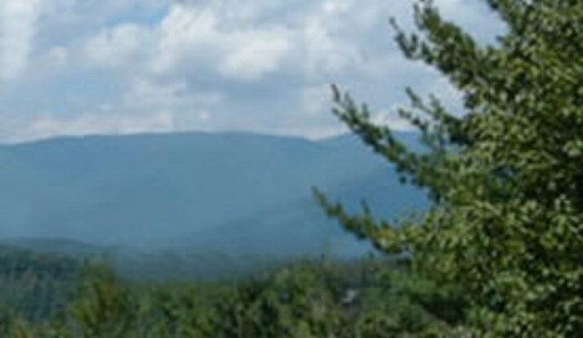 48-3 Smoky Mountain View - Photo 1