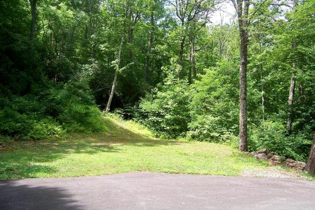 00 Indian Trail - Photo 1