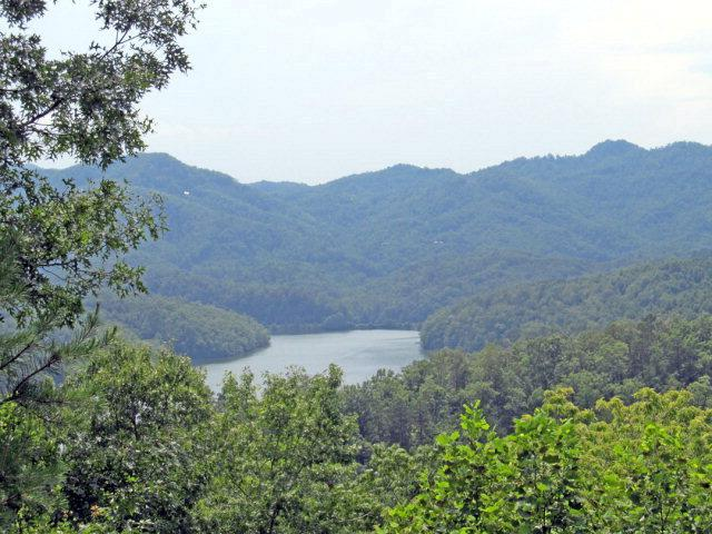lot 44 Cherokee Ridge - Photo 1