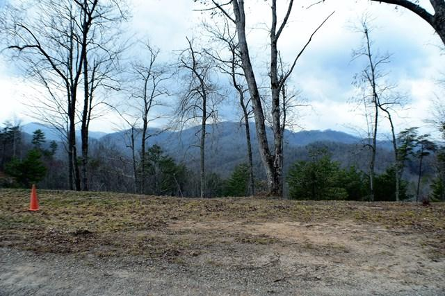 Lot 5 Falcon Ridge - Photo 1