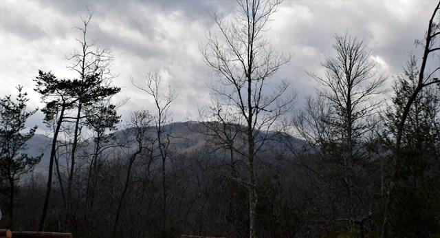 Lot 13 Falcon Ridge - Photo 1