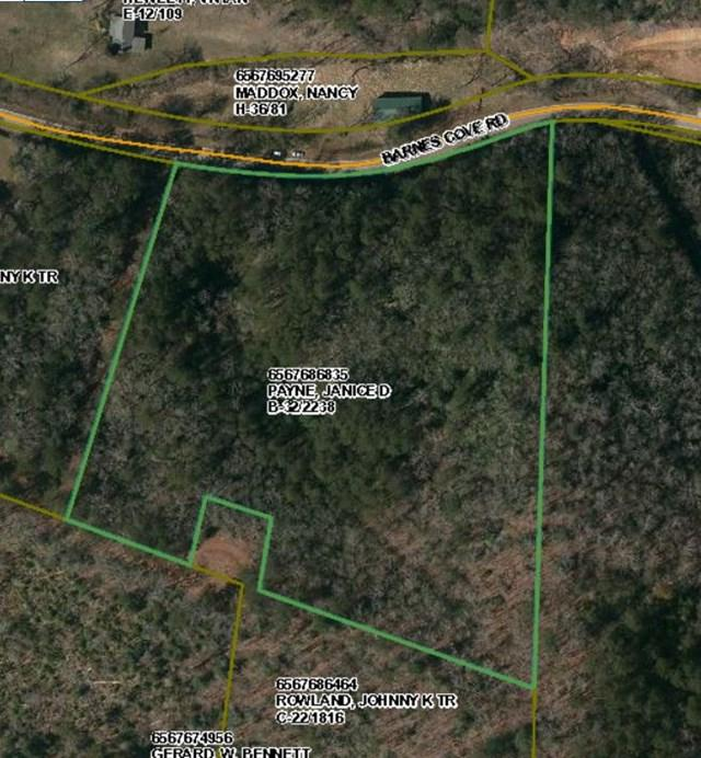 00 00 Barnes Cove Road, Franklin, NC 28734 (MLS #26005536) :: Old Town Brokers