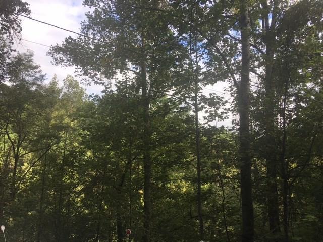 0 Riverside, Whittier, NC 28713 (#26006347) :: Exit Realty Vistas