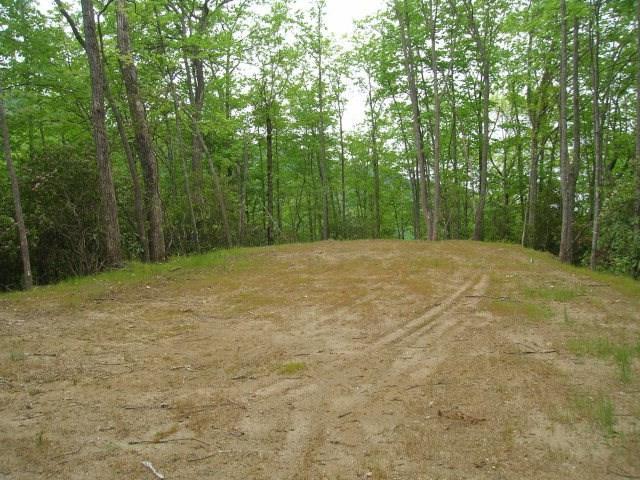 17&20 Black Rock Creek, Cherokee (Jackson Co.), NC 28719 (#26019971) :: Exit Realty Vistas