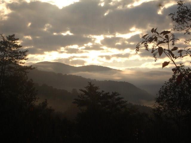 Lot 9 Sundrops, Cullowhee, NC 28723 (#26020073) :: High Vistas Realty