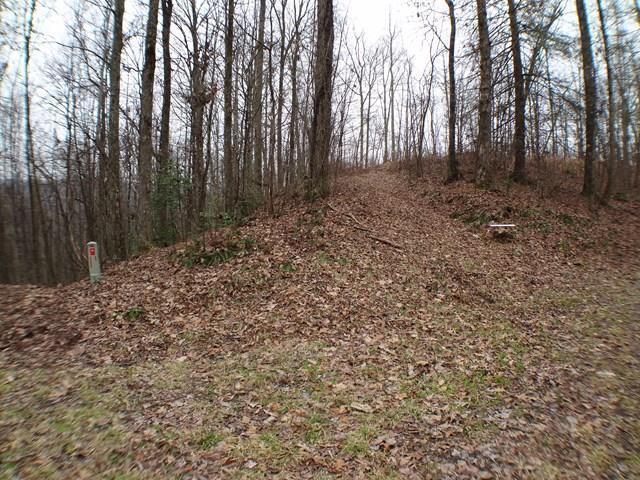 Lot #9 Fawn Trail, Topton, NC 28781 (#26020112) :: High Vistas Realty