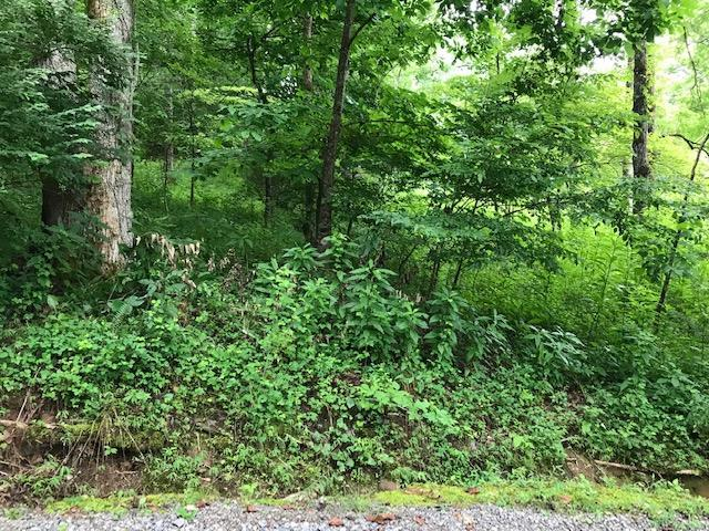 00 Creek Road, Otto, NC 28763 (MLS #26020405) :: Old Town Brokers