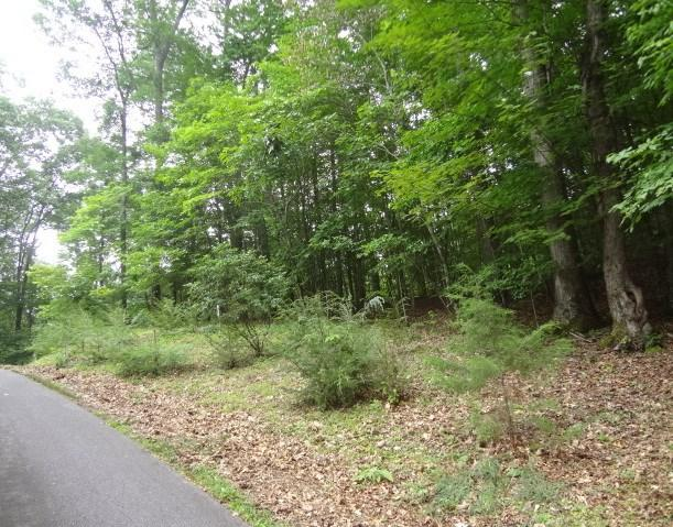 00 Pinecrest Drive, Franklin, NC 28734 (MLS #26020694) :: Old Town Brokers