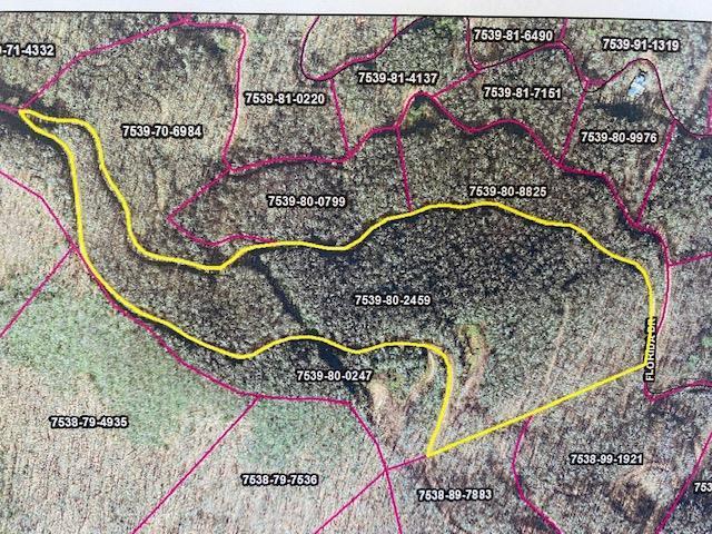 VL 64 Mountain Forest Estates, Sylva, NC 28779 (MLS #26020695) :: Old Town Brokers