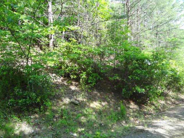 00 Dead End Trail, Franklin, NC 28734 (MLS #26020759) :: Old Town Brokers