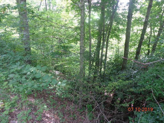 Lot 28 Crisscross Lane, Tuckasegee, NC 28783 (#26021194) :: High Vistas Realty