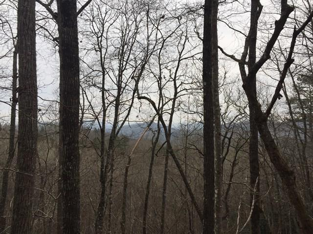 Lot 64A Almond Estates, Almond, NC 28702 (MLS #26021389) :: Old Town Brokers