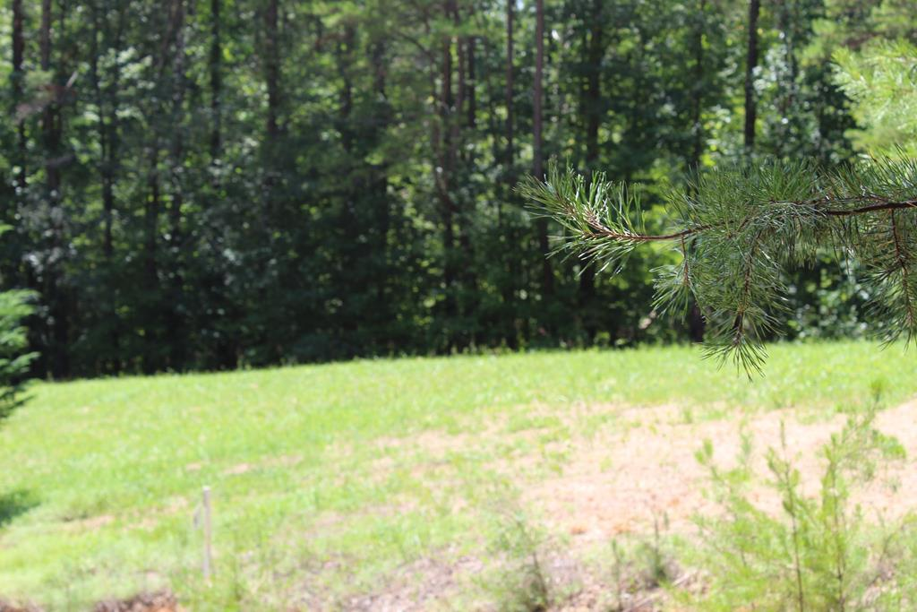 0 Jacobs Road Lot #10 - Photo 1
