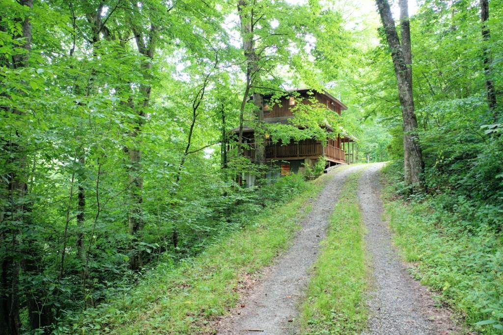7 Hawks Nest Ridge - Photo 1