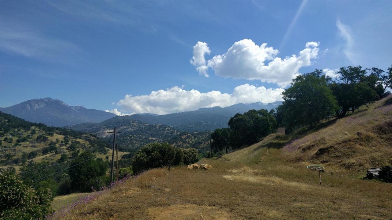 40837 Bear Creek Drive - Photo 1