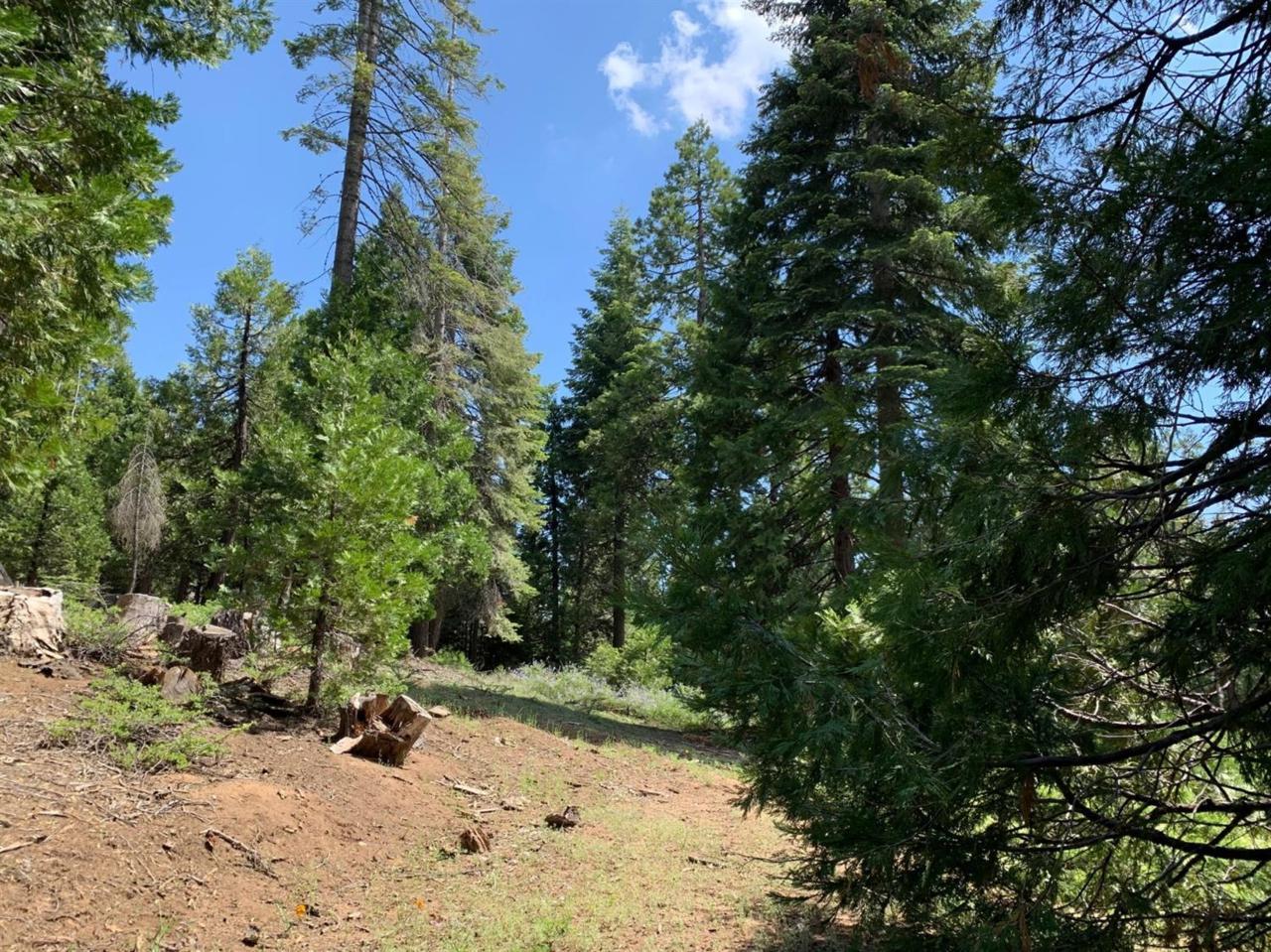 0 Timber Ridge - Photo 1