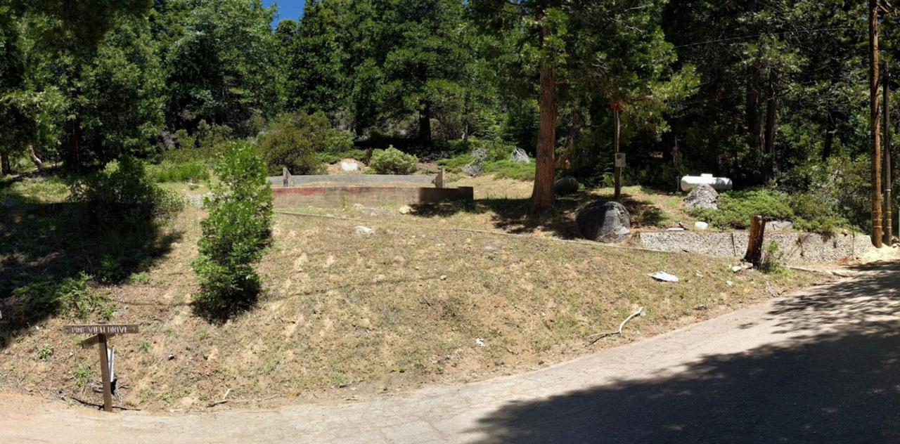 53055 Pine View Drive - Photo 1