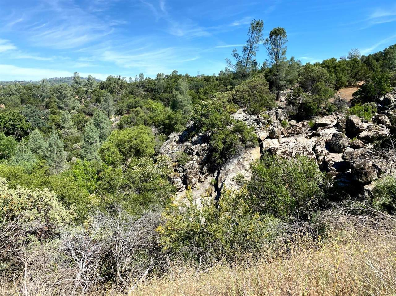 32447 Picayune Creek Ct - Photo 1