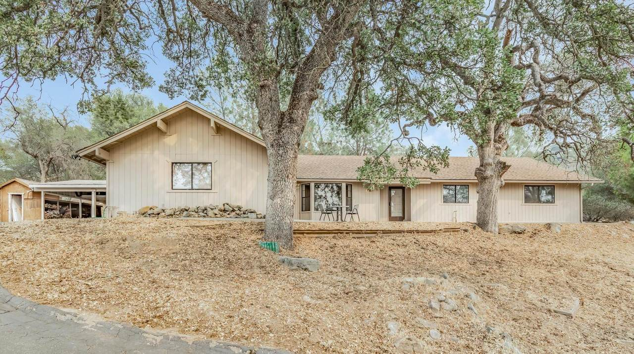 30629 Revis Road - Photo 1