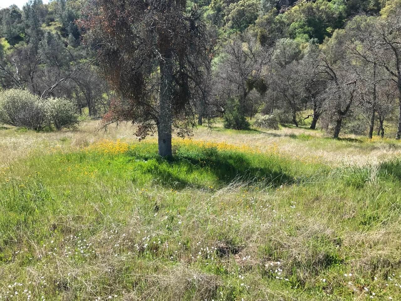0 Delphi Court - Photo 1