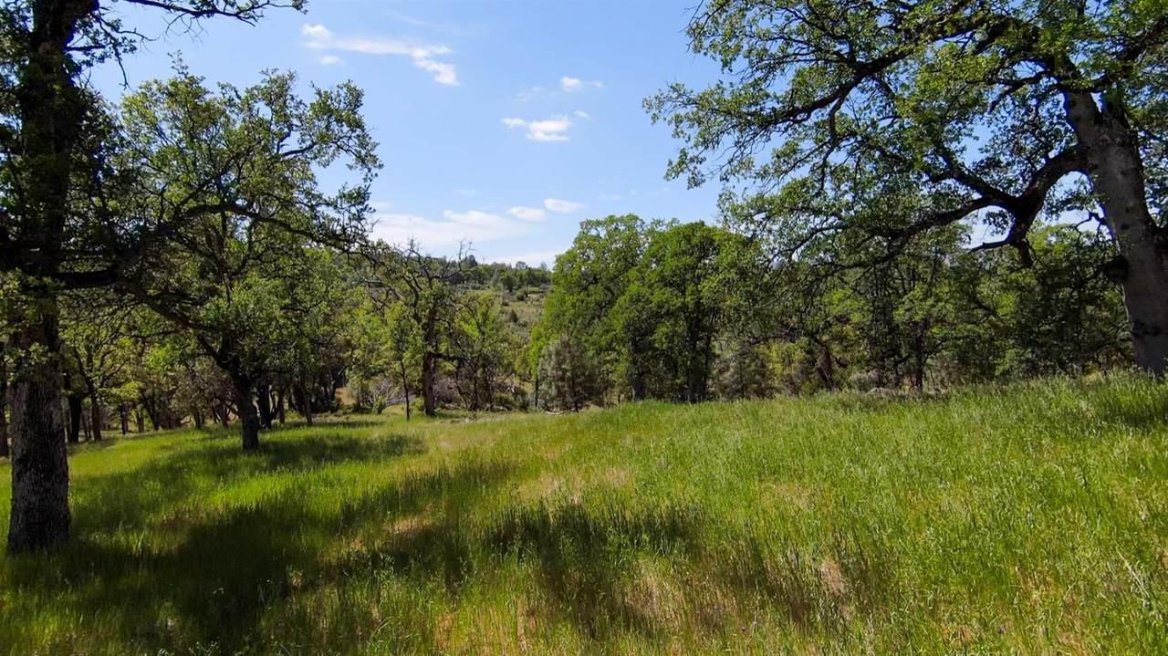 123 Rancheria Creek Road - Photo 1