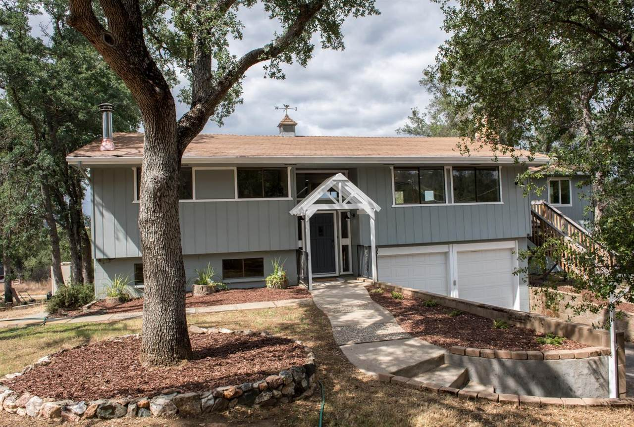 41993 Lilley Mountian Drive - Photo 1