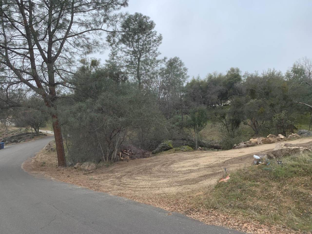 0 2.5 Acre, Person Loop North Drive - Photo 1
