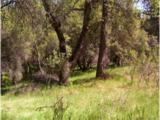 0 Quail Ridge Rd - Photo 3