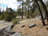 0-2 Lots Pine Cone Path - Photo 1