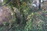 1 Encino Drive - Photo 1