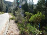 7487 Yosemite Park Way - Photo 3