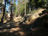 7487 Yosemite Park Way - Photo 6