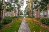8147 Cedar Avenue - Photo 19