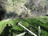 29490 Morgan Canyon Road - Photo 5